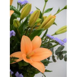 LILLY ORANGE