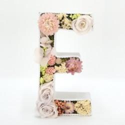 Letras preservadas rosas