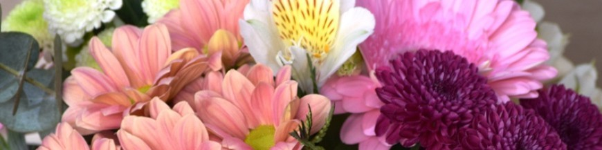 Centros y Cajas con flores